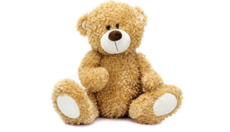 teddy-bear-LAC-0421-1100×733.jpg