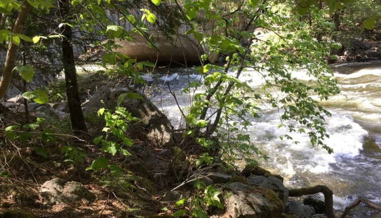 tree-forest-rock-waterfall-wilderness-trail-241969-pxhere.com_.jpg