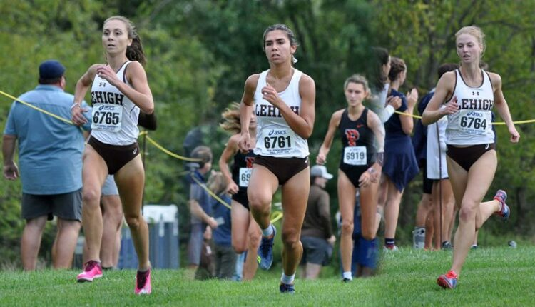 WXC_PREVIEW.jpg